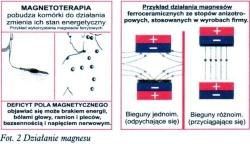Kompres magnetyczny na kark Butterfly