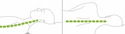 Poduszka pod głowę dwustronna ergonomiczna C120P